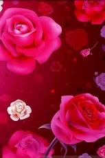 Valentine`s Day Free ecards