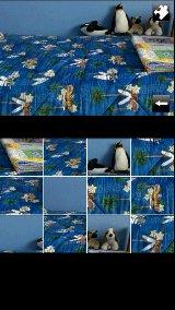 Snapshot Puzzle snapshot video