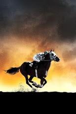 3D Horse Racing horse racing singing