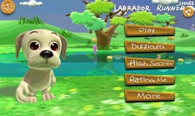 Labrador Run
