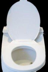 Flush Toilet toilet
