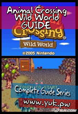 Animal Crossing DS Guide