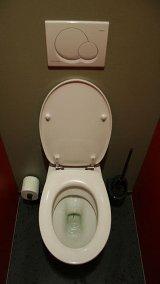 Toilet Flush toilet