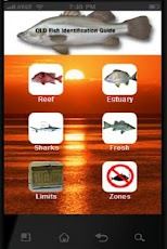 Qld Fish Identifier pill identifier