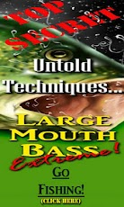 Bass Fishing Secrets