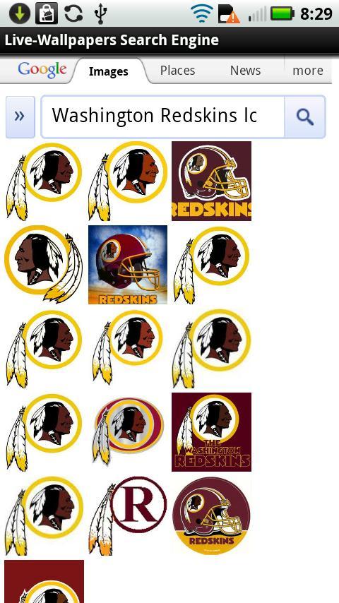 Redskins logo wallpaper for Portal flash level 9