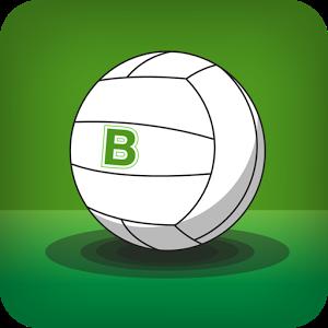 Balls.ie toy balls