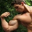 Big Arm Workouts