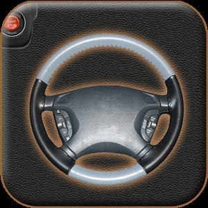 Auto Rudder Digital Toy