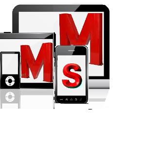 Mobile Monitoring System V2 mall mobile system