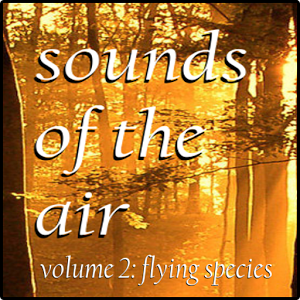 Sounds of the Air 2