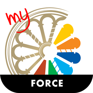 Force force lock total