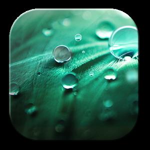 Free Drops HD Wallpaper