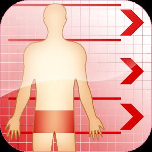 Körper Proportionen