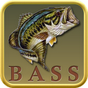 Bass Fishing rapala pro bass fishing