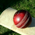 Stick cricket: Free game