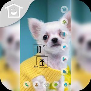 White puppy cute theme