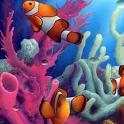 Clown Fish Aquarium LWP