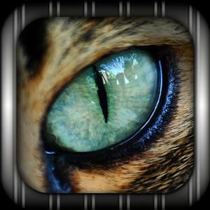 Cat EYE Live Wallpaper