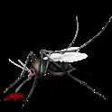 Amazing Mosquito Facts