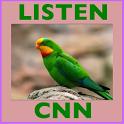 Listening CNN News-Study Eng