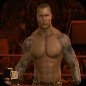 Wrestling Superheroes Wrestler