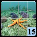 15 puzzle Underwater
