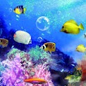Aquarium live wallpaper(free)