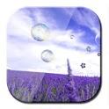 HD Lavender dynamic wallpaper