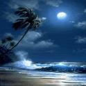 Nature Paradise Storm Live Wal