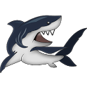 Amazing Shark Facts