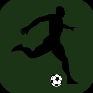 Soccer Street Striker Football