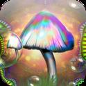 Magic Mushrooms HD