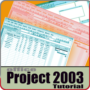 Project 2003 tutorial