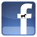 Horse Facebook
