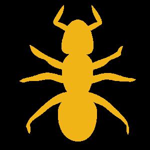 Ant Pop