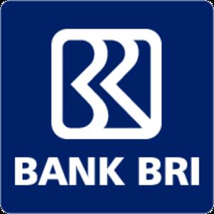 BRI Internet Banking Launcher