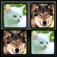 SwapMe: Animals