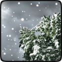 Winter Snowfall Free Wallpaper