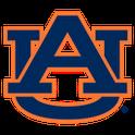 Auburn Tigers LWP (B)