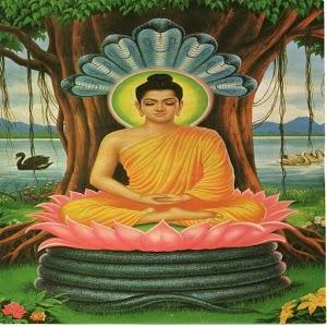 Buddha TV Show