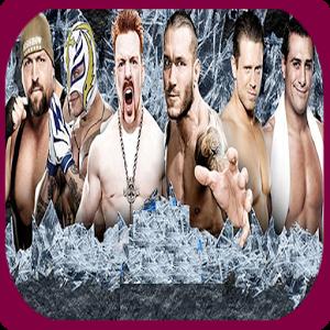 WWE Wrestler 2014