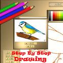 Step By Step Draw