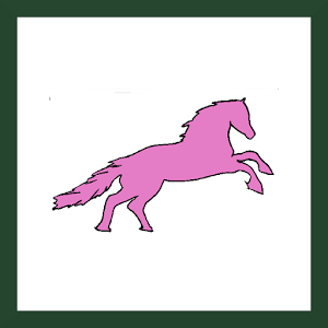 Horses Picture Gallery