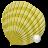 Crazy Shells