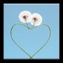 Valentines Frames