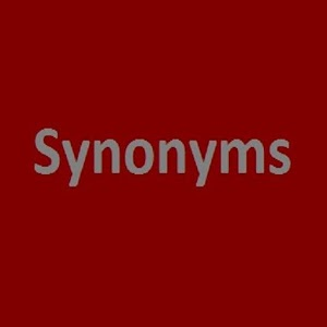 Synonyms Practice