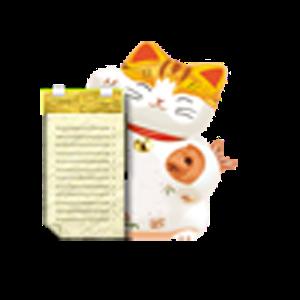 Gemini Live Logcat