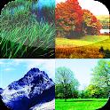 Whatsapp nature HD wallpaper