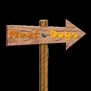 MeetDogs
